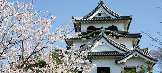 Castle tower of Hikone Castle